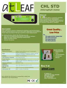 atLEAF CHL STD Flyer