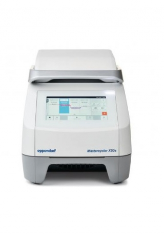 Mastercycler X50s – ПЦР-амплификатор, Eppendorf